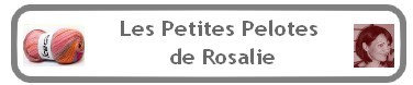 rosalie top logo 2 376px 78px