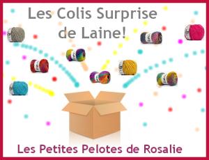 colis surprise2016